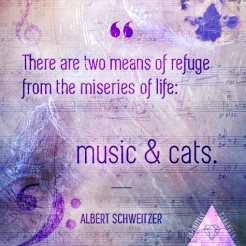 music&cats